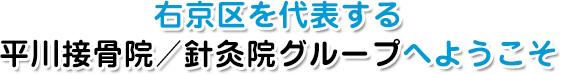 右京区を代表する平川接骨院/針灸院グループへようこそ